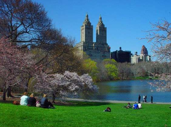 central park things to do in New York