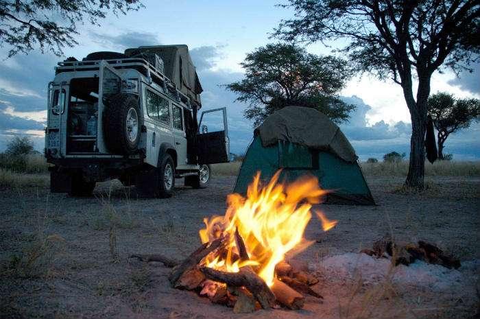 Tips On Taking Children On Africa Safari